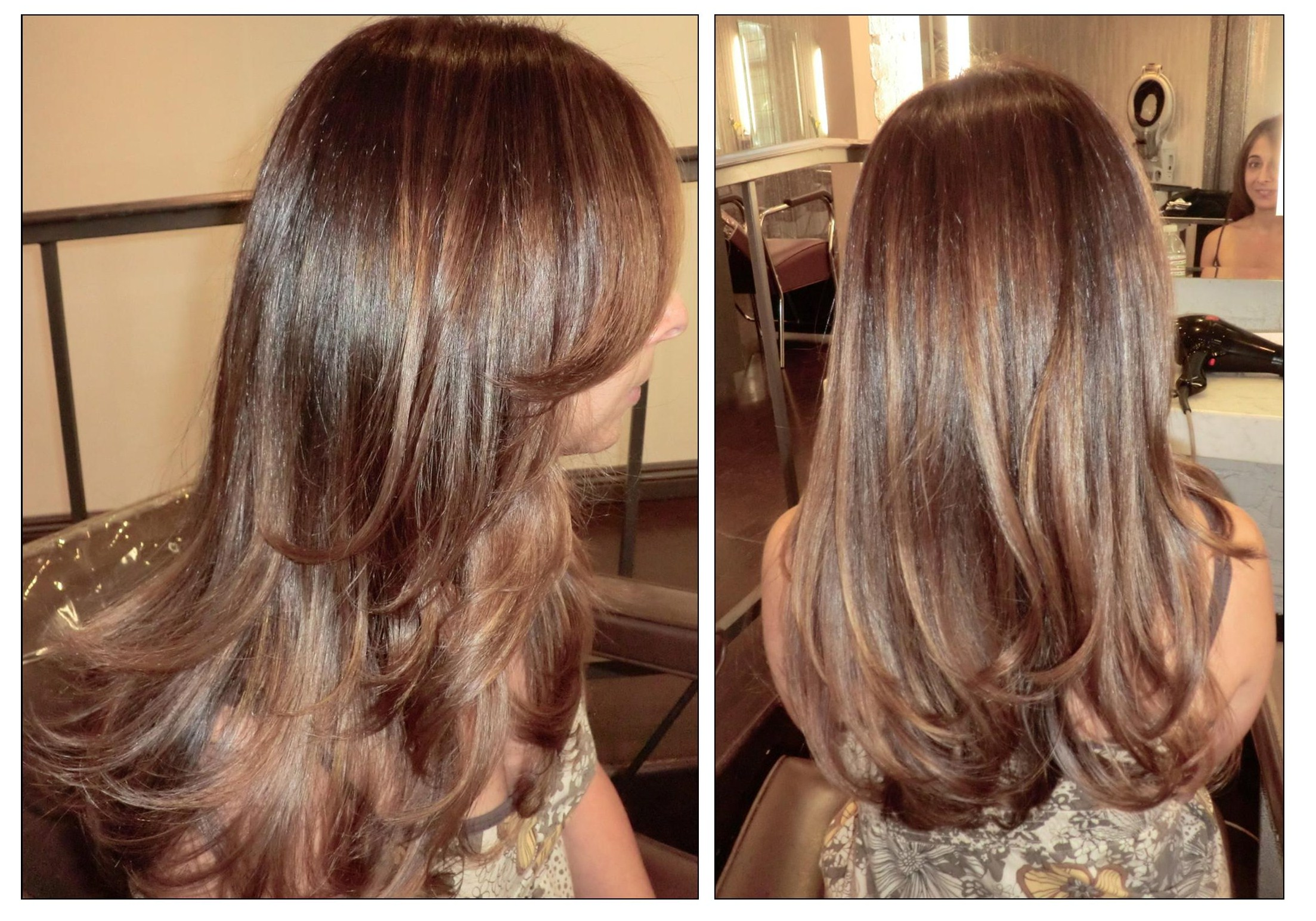 Color Fix  Brassy HighlightsBrassy Brown Hair Fix