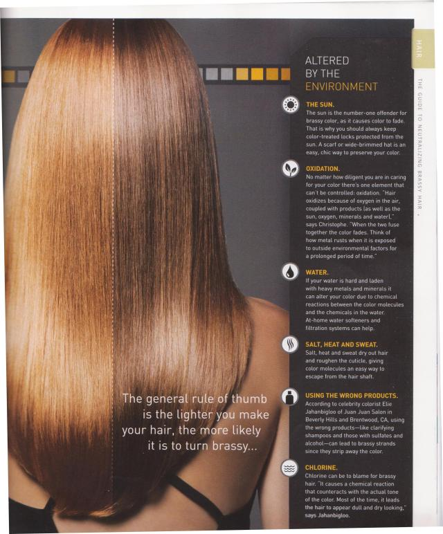 Causes Of Brassy Hair Color Neil George