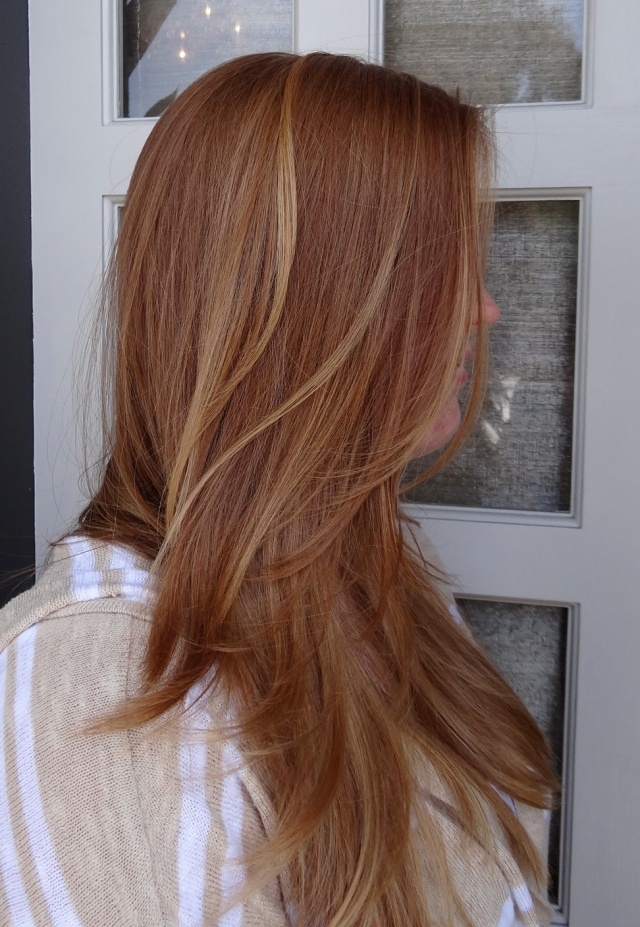 Strawberry Blonde Highlights Blonde Hair Hairs Picture