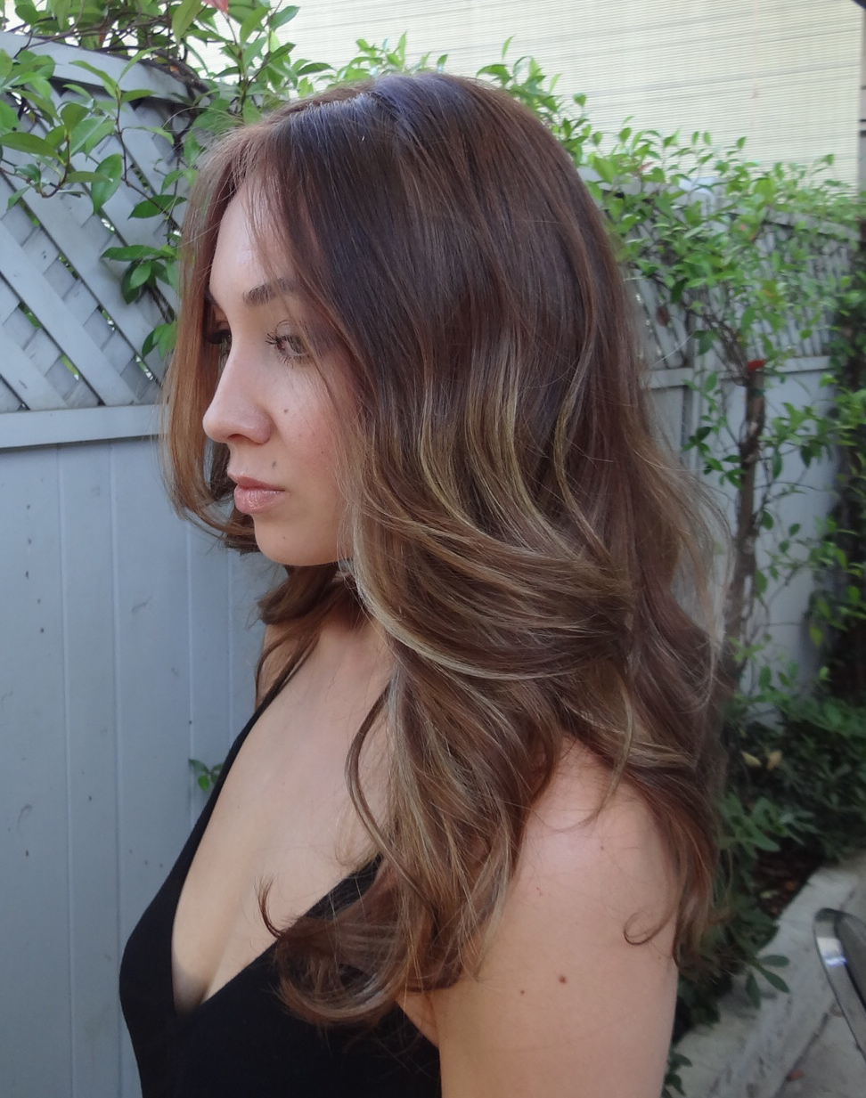 Brunette with caramel highlights neil george brunette with caramel highlights pmusecretfo Image collections
